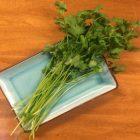 Rama de cilantro