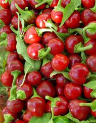Chiles Hot Cherry