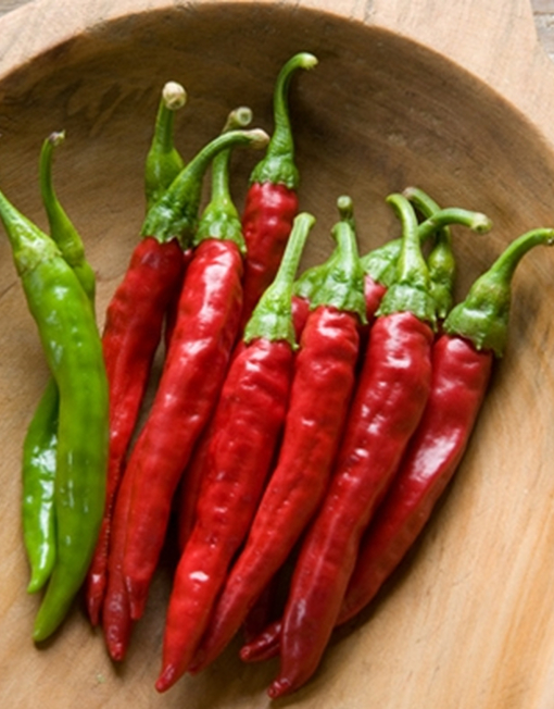 Chiles Red Rocket