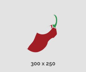 300x250 banner ehp