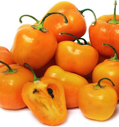 Chiles Manzano