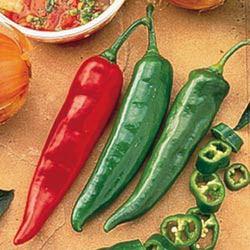 Chiles garden salsa