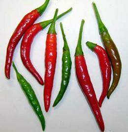 Chiles japonés
