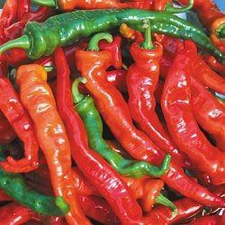 Chiles maules rojo