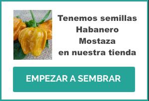 EHP Shop Banner Semillas Habanero Mostaza