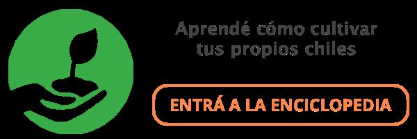Banner Enciclopedia de Chiles