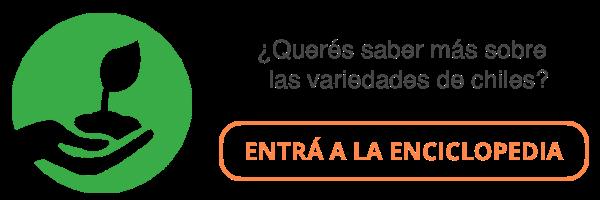 banner enciclopedia de variedades chiles