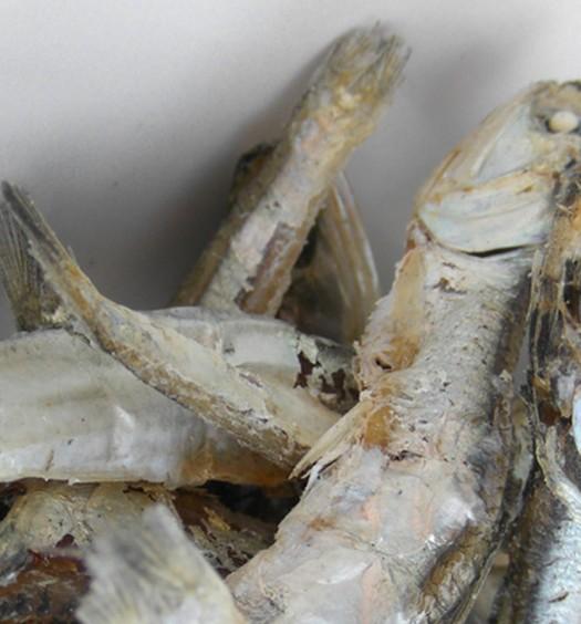 Anchoas secas para dashi coreano