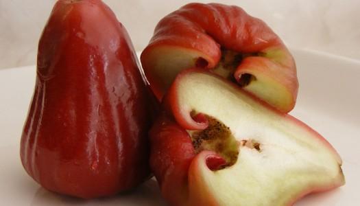 Manzana rosa de Malasia