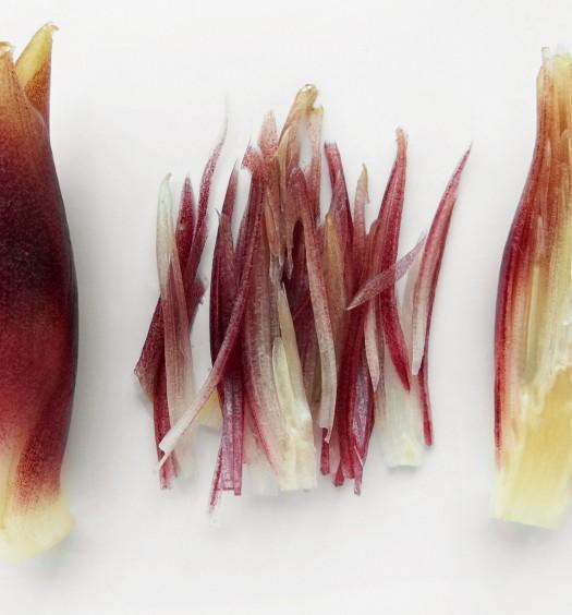 Myoga (botones florales de jengibre japonés)