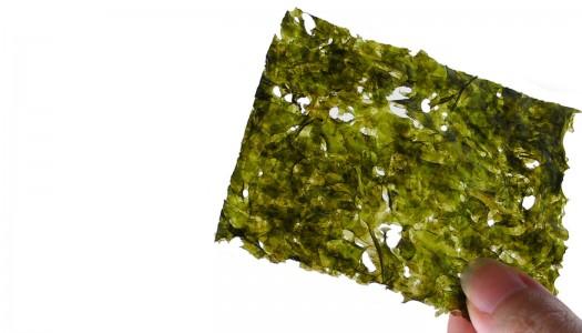 Snack-nori (snack de algas)