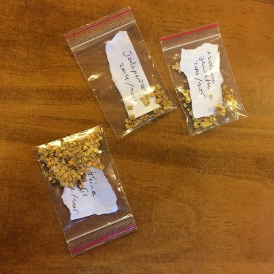 Semillas de chile en ziplock con etiqueta