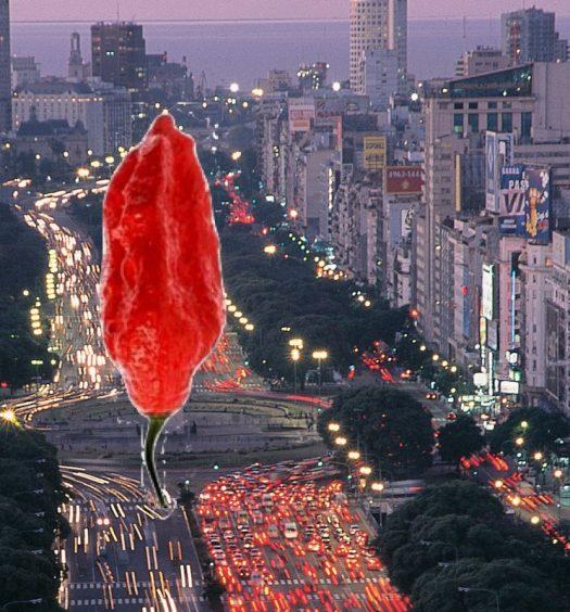 9 de julio Argentina Picante