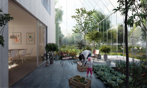 Jardines estacionales sustentables en ReGen