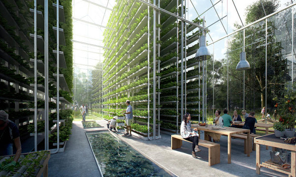 Cultivo vertical de alimentos en ReGen