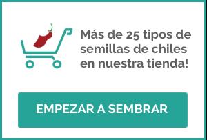 Banner Tienda Online Semillas de Chiles