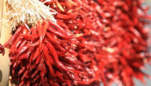 Guía Para Conservar Chiles y Picantes